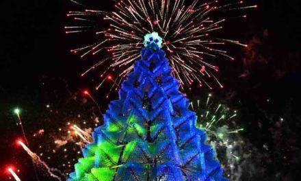 ¡Obtiene el Récord Guinness el árbol navideño de material reciclado de Villa Navidad en Aguascalientes!