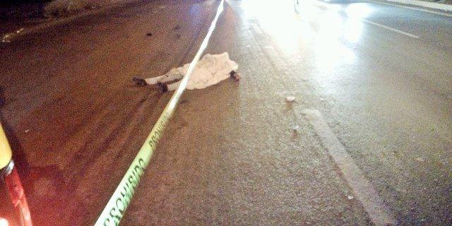¡Joven murió atropellado por un automóvil en la carretera federal 45 Norte en Aguascalientes!