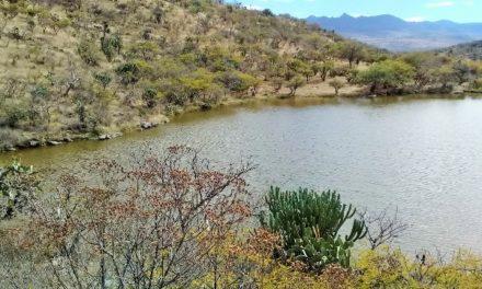 ¡Hallaron muerto y putrefacto a un hombre en una presa en Aguascalientes!
