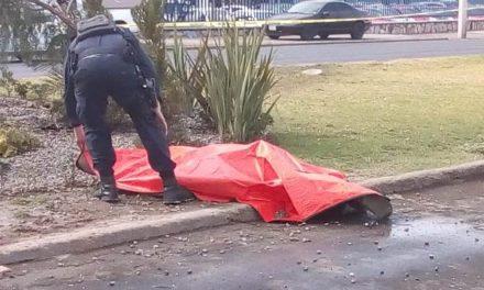 ¡Trabajador de Parques y Jardines murió embestido por un automóvil en Aguascalientes!