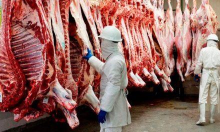 ¡Garantiza ISSEA carne libre de Clenbuterol en productos cárnicos!