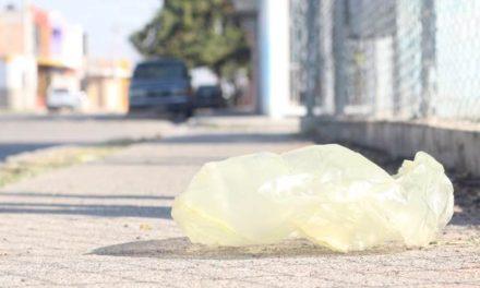 ¡Quedó prohibida la entrega de bolsas plásticas en Pabellón de Arteaga!