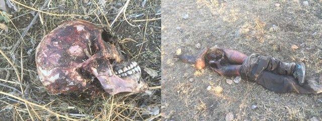 ¡Hallaron un cuerpo seccionado, putrefacto y devorado por animales en un monte en Aguascalientes!