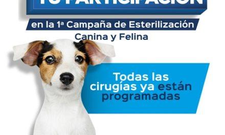¡Agradecemos tu participación en la Primera Campaña de Esterilización Canina y Felina!
