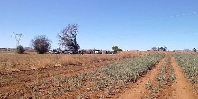 ¡Hombre se suicidó colgándose de un árbol en Morelos, Zacatecas!