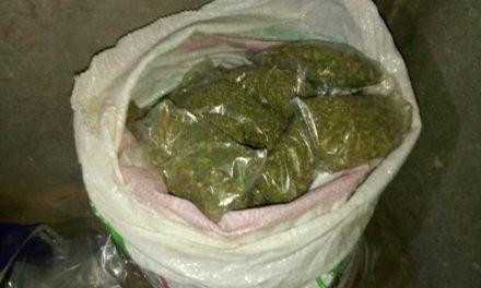 ¡En Luis Moya aseguró PEP más de 13 kilogramos de marihuana!