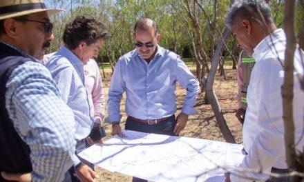 ¡Supervisó gobernador del Estado la plantación de árboles en el proyecto del Bosque Urbano!