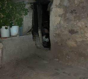 ¡Hombre murió intoxicado y quemado tras encender una fogata en su casa en Calvillo, Aguascalientes!