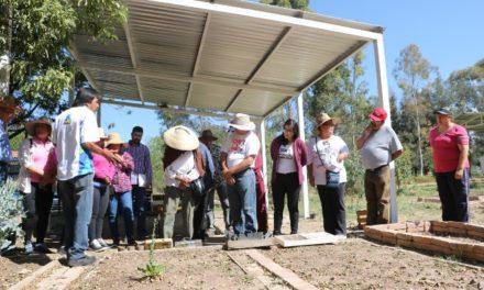 ¡Municipio ofrece talleres de Microhuertos para una sana alimentación!