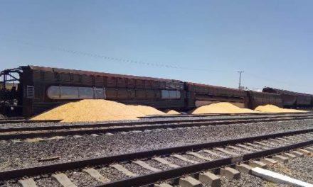 ¡Se descarriló el tren en Aguascalientes: 1 lesionado!