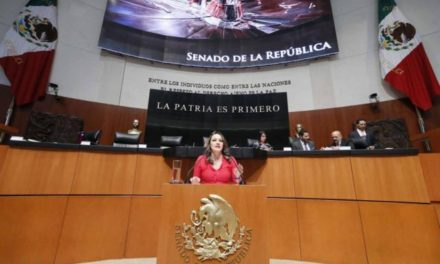 ¡Senadora Martha Márquez pide claridad en acuerdo de Estados Unidos con México!