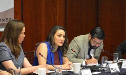 ¡Urge Martha Márquez al Gobierno Federal transparentar el TMEC!