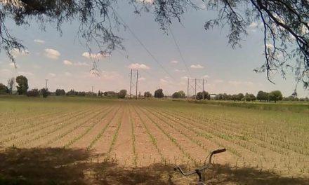 ¡Campesinos afectados en sus predios por CFE dispuestos a interrumpir el inicio de nueva obra para generar energía en Aguascalientes!