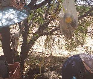 ¡Hombre intentó matarse pero fue rescatado por los servicios de emergencia en Aguascalientes!
