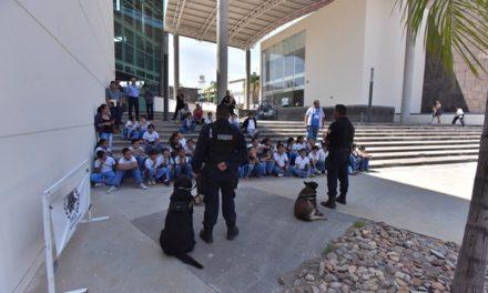 ¡Municipio lleva programas de prevención de las violencias y la delincuencia a más de 115 mil ciudadanos!