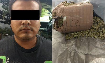 ¡Policías estatales de Aguascalientes detuvieron a un narcomenudista con 20 kilos de marihuana!