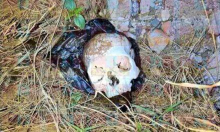 ¡Hallaron un cráneo humano en la colonia Cuesta Blanca en Lagos de Moreno!