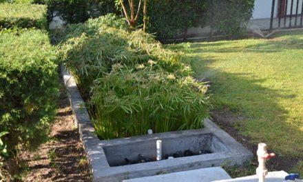 ¡Municipio construye humedales para aprovechar el agua!