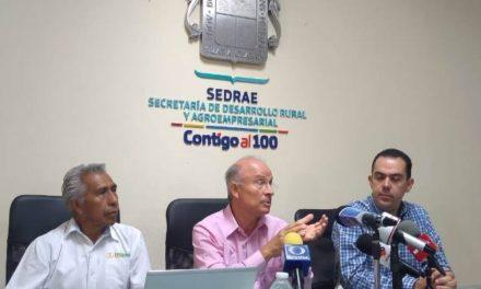 ¡Se apoyará a 2 mil productores de Aguascalientes con semilla de avena: Manuel Alejandro González!