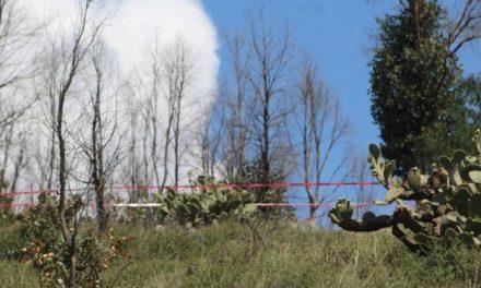 ¡Joven adicto se suicidó ahorcándose en un árbol en el Cerro del Grillo en Zacatecas!
