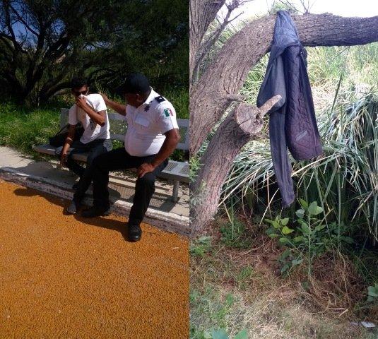¡Joven se colgó de la rama de un árbol con una chamarra y fue rescatado por policías municipales de Aguascalientes!