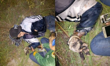 ¡Ladrón quiso robar cableado eléctrico y se salvó de morir electrocutado en Aguascalientes!