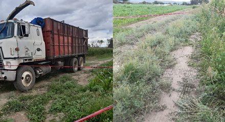 ¡Hallaron muerto y putrefacto a un hombre en una parcela de un rancho en Aguascalientes!