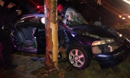 ¡Auto se estrelló contra un árbol en Aguascalientes: 3 lesionados!