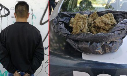 ¡Policías municipales de Aguascalientes detuvieron a vendedor de drogas con 335 gramos de marihuana!