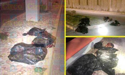 ¡Fueron 5 hombres los ejecutados-descuartizados y hallados en 13 bolsas en Ojuelos!