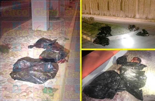 ¡Hallaron 12 bolsas con restos de personas ejecutadas y descuartizadas en Ojuelos!