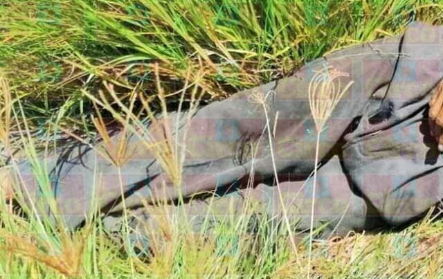 ¡Encontraron muerto a un adulto mayor a un lado de una carretera en Lagos de Moreno!