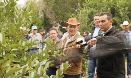 ¡Este es el sexenio del Campo, apoyos a productores locales seguirán: MOS!