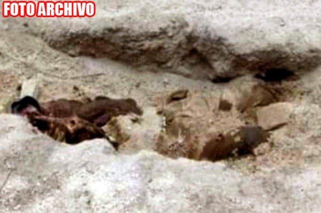 ¡Descubrieron a un hombre ejecutado y putrefacto en una narco-fosa en Río Grande!