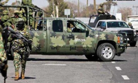 ¡Guardia Nacional y SEDENA aseguraron casi 2 toneladas de marihuana en Zacatecas!