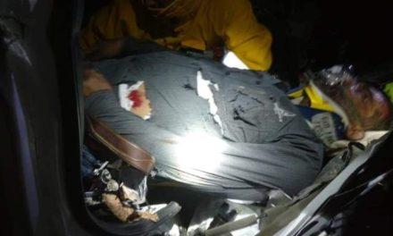 ¡Hombre murió tras estrellar su camioneta contra un árbol en Aguascalientes!