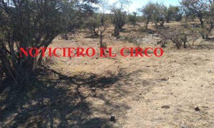 ¡Se encontraron 9 cuerpos en las narco-fosas de Lagos de Moreno!