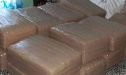 ¡Tras cateo fueron asegurados más de 93 kilos de cannabis en Aguascalientes!