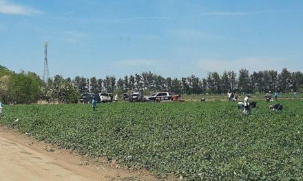 ¡Adolescente murió tras caer de un tractor y ser aplastada por éste en Aguascalientes!