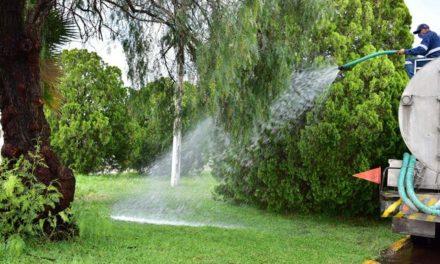 ¡Aumenta Municipio jornadas de riego en áreas verdes por temporada de calor!