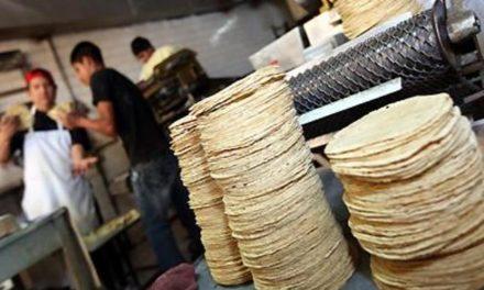¡2 tortillerías no respetaron precio en Aguascalientes, PROFECO clausuró!