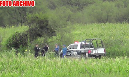 """¡Policías de Jerez caen a """"voladero"""" y gracias a un árbol, se salvan de morir!"""