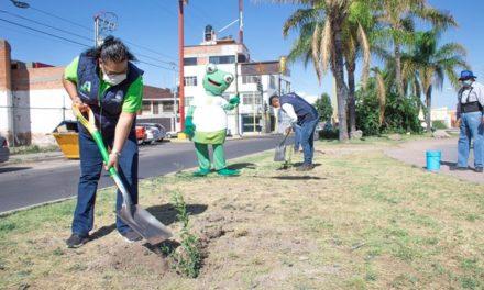 ¡Con resultados celebra el Municipio de Aguascalientes el Día Mundial del Medio Ambiente!