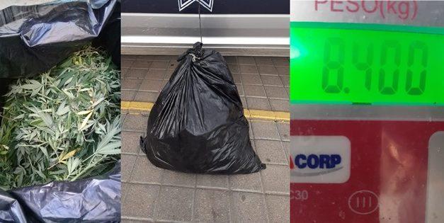 ¡Aseguraron 8 kilos de marihuana en Calvillo, Aguascalientes!