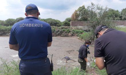 ¡Hallaron a un hombre muerto y putrefacto en un estanque en Aguascalientes!