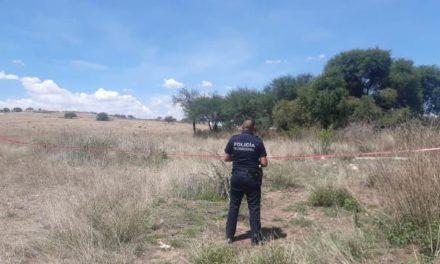 ¡Hombre se mató colgándose de un árbol a 5 metros de altura en Aguascalientes!