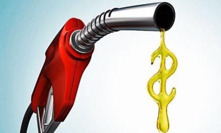 ¡Gasolina y pollo los productos más encarecidos en las últimas semanas: INEGI!