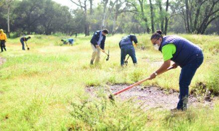 ¡Se realizó jornada de limpieza y reforestación en la mezquitera La Pona!