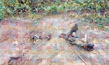 ¡Hallan narco fosa con los restos de una persona en Lagos de Moreno!