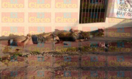 ¡CDS ejecutó a tres hombres en Fresnillo y colgó una narco-manta!